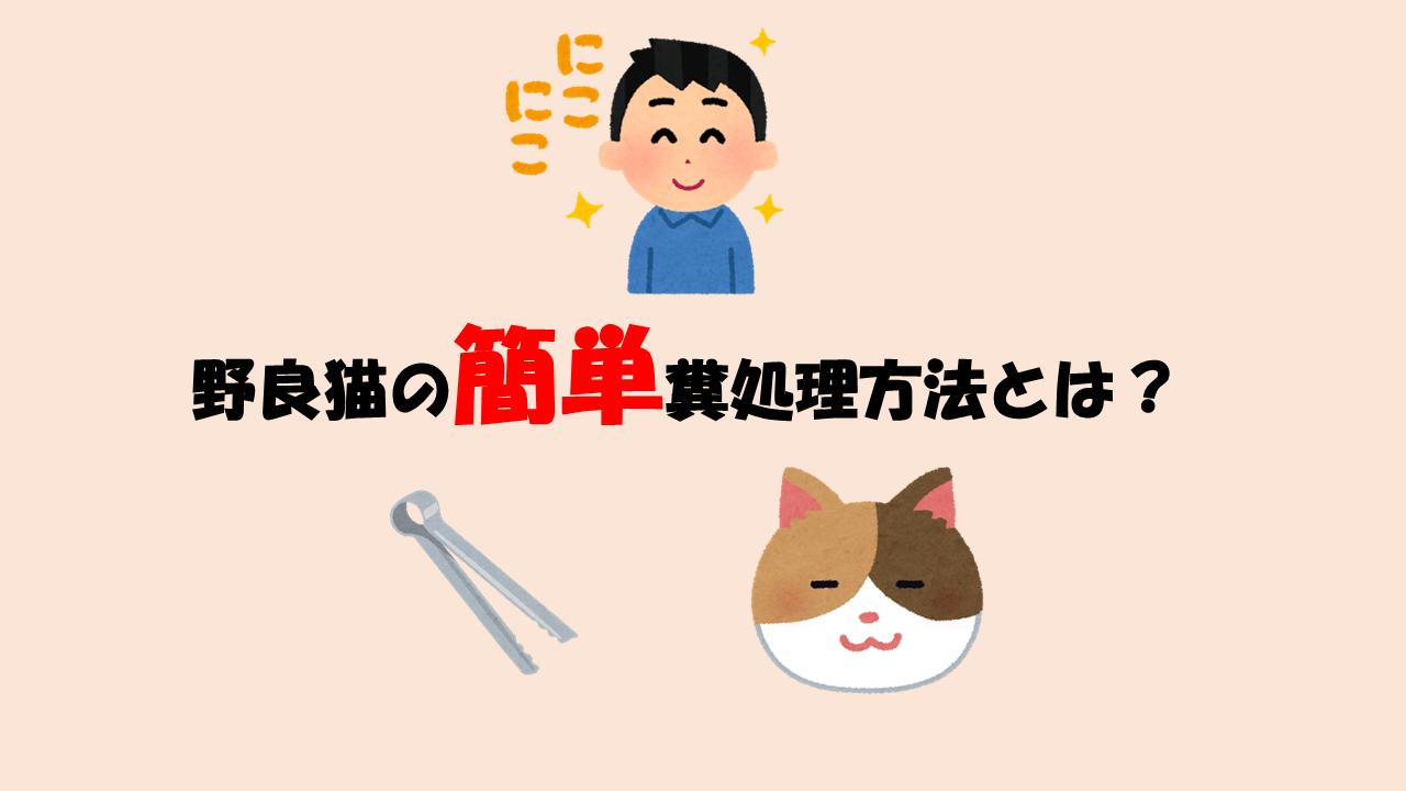 野良猫の簡単糞処理方法とは?